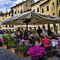 Square Amphitheater In Lucca Italy by David Smith