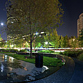 St. Louis City Garden Panorama by David Coblitz
