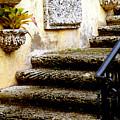 Stairs To Life by Patricia Awapara