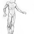 Standing Male Nude by Adam Long
