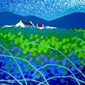 Starry Night In Wicklow by John  Nolan