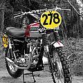 Steve Mcqueen Isdt Triumph by Mark Rogan