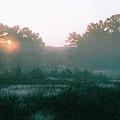 Still Mist by Tom Hefko