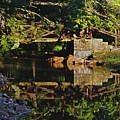 Still Water Reflections by Darlene Bell