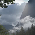 Stormy Morning In Glacier by Sandra Bronstein