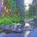 Strawberry Creek 1859 by Lisa Dunn