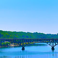 Strawberry Mansion Bridge From Laurel Hill by Bill Cannon
