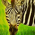Stripes In Africa by Ruben Barbosa