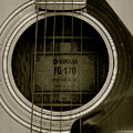 Strum by Amy Strong