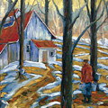 Sugar Bush by Richard T Pranke
