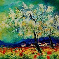 Summer 5691235 by Pol Ledent