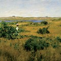 Summer At Shinnecock Hills by William Merritt Chase
