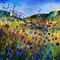 Summer Glory by Pol Ledent