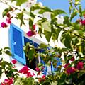 Summer In Greece by Ilias Kordelakos