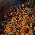 Sun Flowers And Physialis  by Pol Ledent