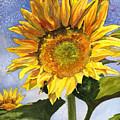 Sunflowers II by Anne Gifford