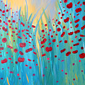 Sunlit Poppies by Stacey Zimmerman