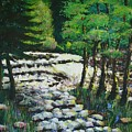 Sunlit Waterfall by Art Nomad Sandra  Hansen