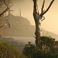 Sunrise Haze by Lori Mellen-Pagliaro