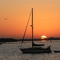 Sunrise On The Bay by Judy  Waller