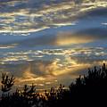 Sunset Bay 8 by Joyce StJames