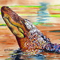Sunset Gator by Maria Barry