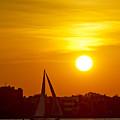 Sunset In Charleston South Carolina Sailboat by Dustin K Ryan