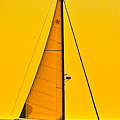 Sunset Sailing by Liz Vernand