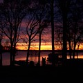 Sunset Thru The Trees by Tish Kennedy