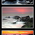 Sunset Triptych by Greg Clure