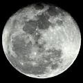 Super Moon by Lisa Scott
