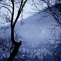 Susquehanna Dreamin... by Arthur Miller