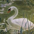 Swanlike Neck by Barbara Pascal