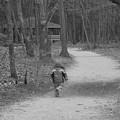 Sweet Child Of Mine by Jennifer  Sweet