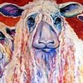 Sweet Wensleydales Sheep By M Baldwin by Marcia Baldwin