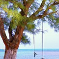 Swing Me... by Karen Wiles