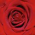 Swirling Red Silk by DigiArt Diaries by Vicky B Fuller