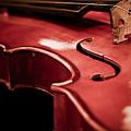 Symphony Of Strings by Valerie Morrison