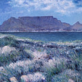 Table Mountain Cape Town South Africa 2007  by Enver Larney