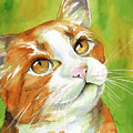 Tan And White Domestic Cat by Cherilynn Wood