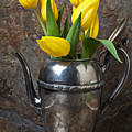 Tea Pot And Tulips by Garry Gay