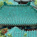 Temple Roofs by Mary Lane