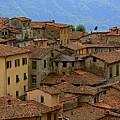 Terra-cotta Roofs Barga Vecchia Italy by Nicola Fiscarelli