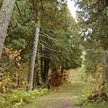 Tettegouche State Park by Kathy Schumann