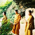 Thai Monks by Mary Rogers