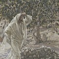 The Accursed Fig Tree by Tissot