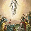 The Ascension by English School
