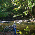 The Beauty Of Trout Fishing 2 - Original Photography by Susan  Lipschutz