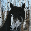 The Birch Horse by Jennifer Nilsson