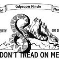 The Culpepper Minute Men by Scarlett Royal